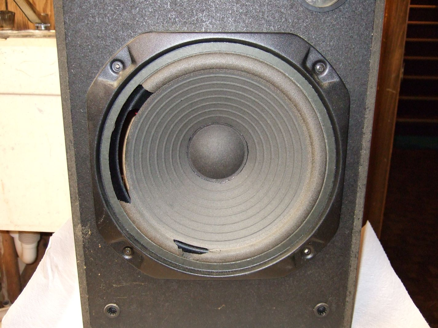 Speaker Repair - Realistic Nova-18